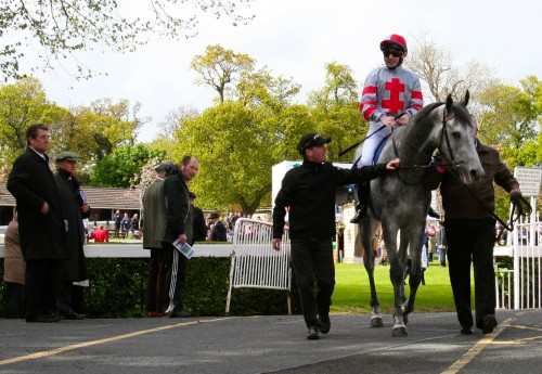 Mike Dillon Of Ladbrokes studies Little White Cloud leaving the ring for The Derrinstown Stud Stakes