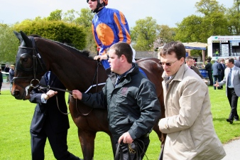 Just Pretending runs at the Curragh today in the Irish Oaks