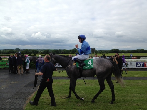 John Oxx's Ponfeigh returning to the ring after his recent win at Navan
