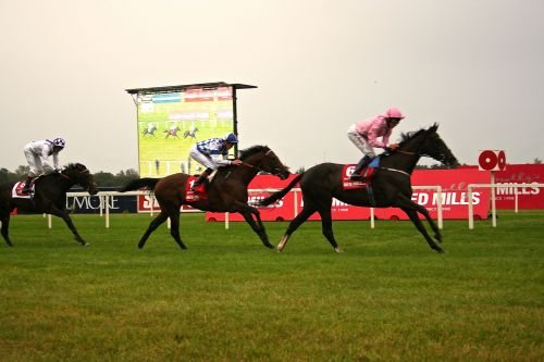 The Fugue winning last years Irish Champion Stakes