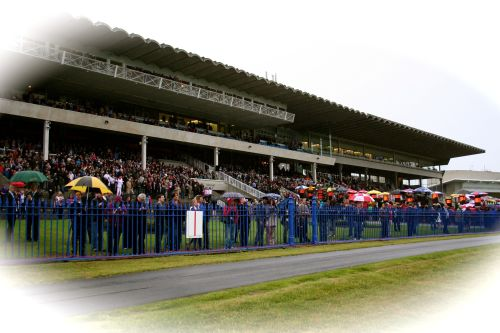 Crowd Watch on at Leopardstown at last years Champion Stakes