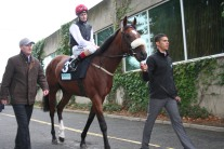 The Two Year Old Free Eagle (8th September 2013)