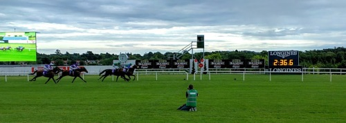 Stellar Mass winning the Ballyroan Stakes at Leopardstown in August