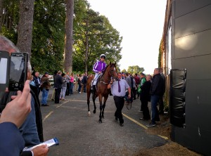 Highland Reel leave the ring at Leopardstown for the Irish Champion Stakes