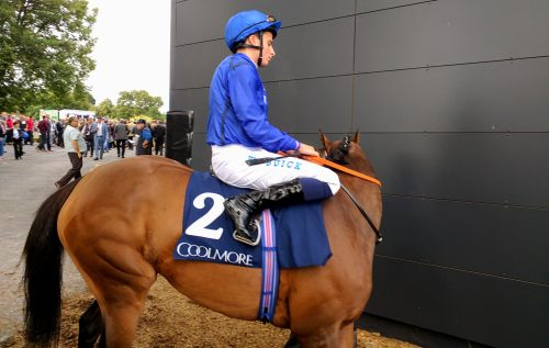 2nd Godolphin Devonshire on her way out for the Coolmore Matron Stakes